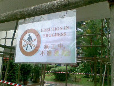 sign+bad+erections.jpg (image)