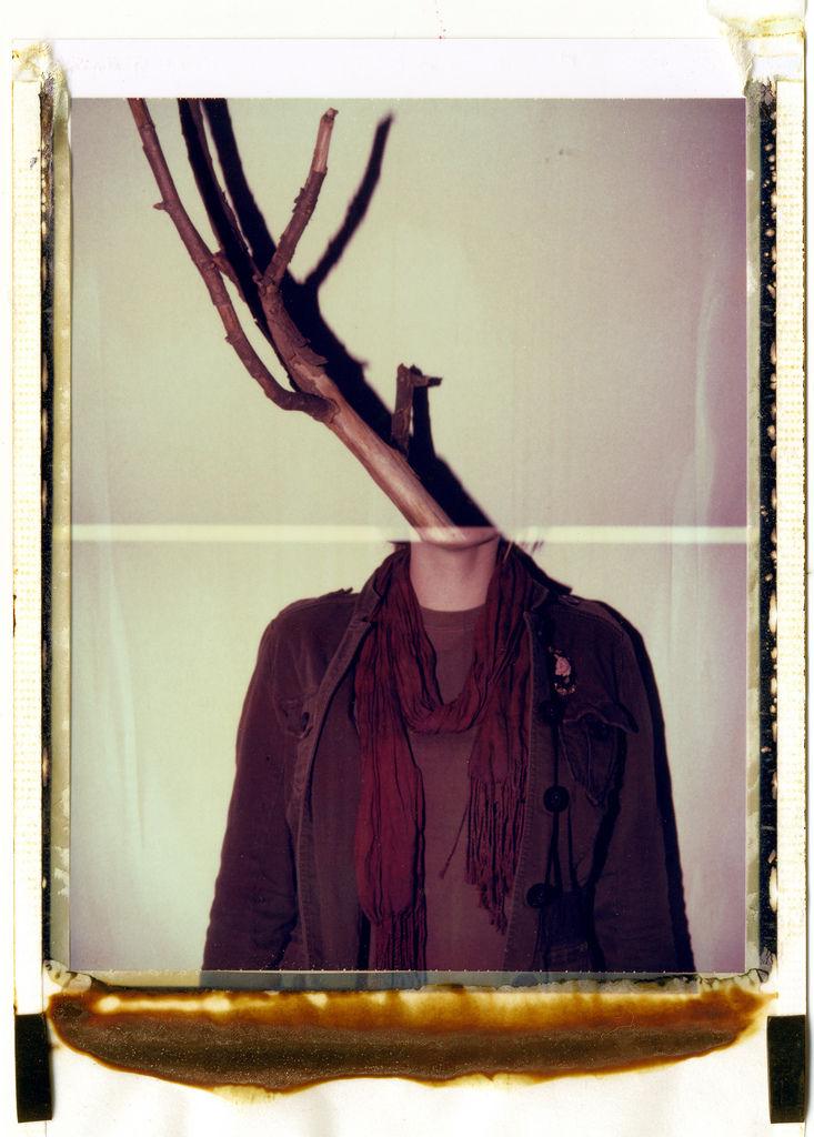 Flickr Photo Download: Deer