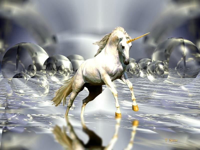 unicorn001.jpg 800×600 pixels
