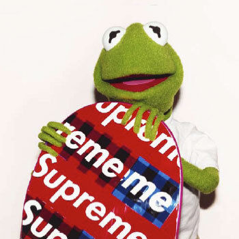 Solematic Worldwde Terry Richardson X Supreme X Kermit The