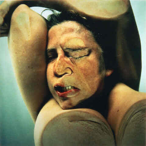 Jenny Saville - Closed Contact