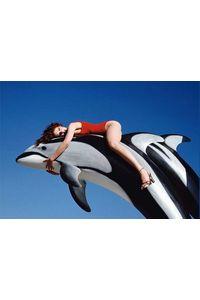 guy-bourdin-dolphin.jpg 400×275 pixels