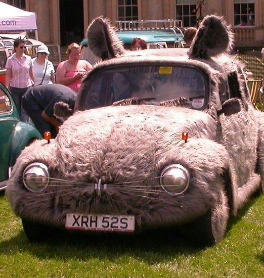 bunnycar.jpg 522×550 pixels