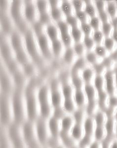 milch50.jpg (JPEG Image, 510x646 pixels)
