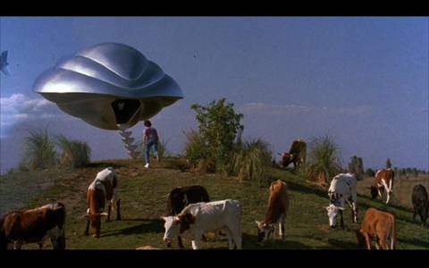 Flickr Photo Download: flight of the navigator
