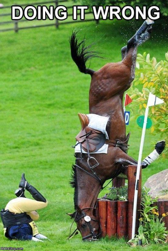 Bad_Horse_Rider.jpg 550×821 pixels