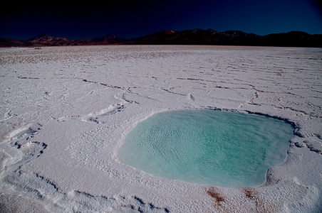 Salar de Maricunga on Flickr - Photo Sharing!