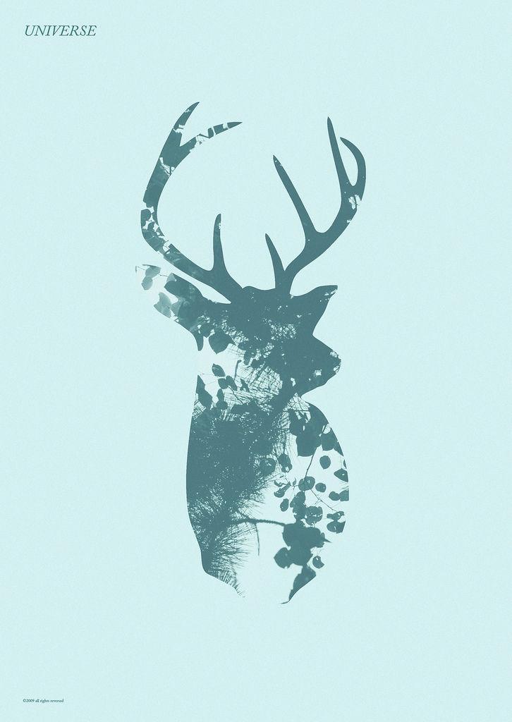 Téléchargement de photo Flickr : universe (deer)