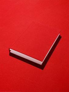 redbook.jpg 788×1050 pixels