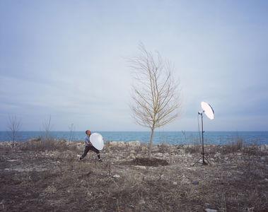errant3.jpg 800×634 pixels