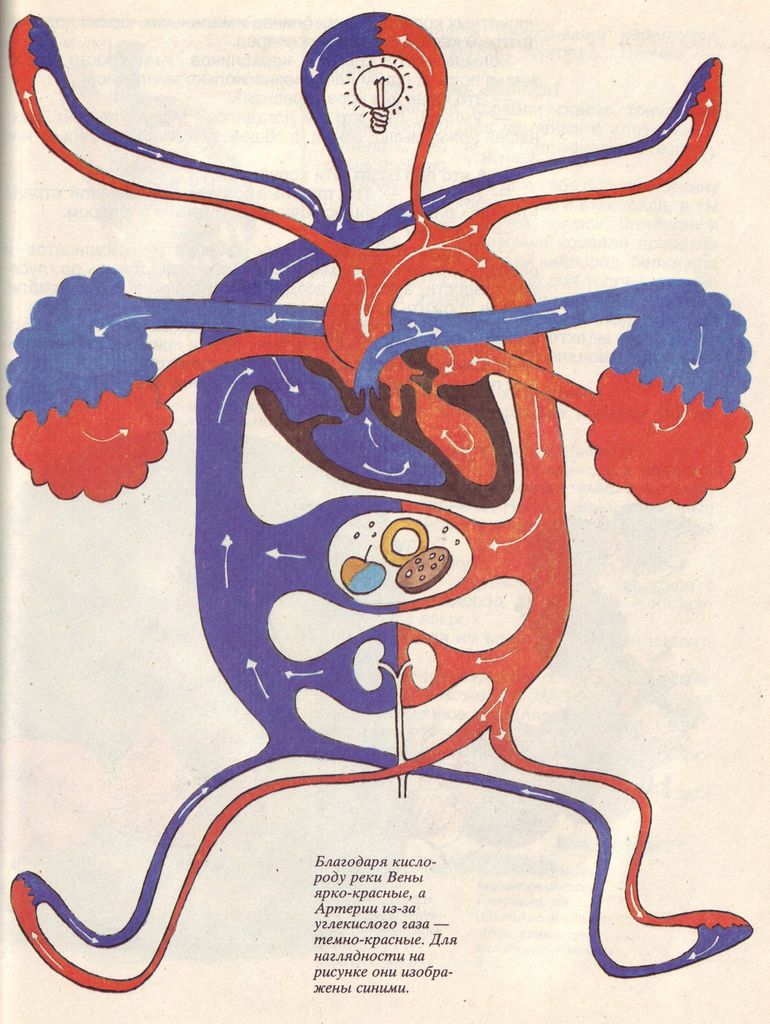 Flickr Photo Download: 05 Russian elementary school textbook on The Miracle of Life, 1992