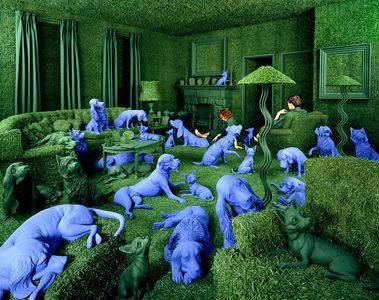 Designaside » Sandy Skoglund