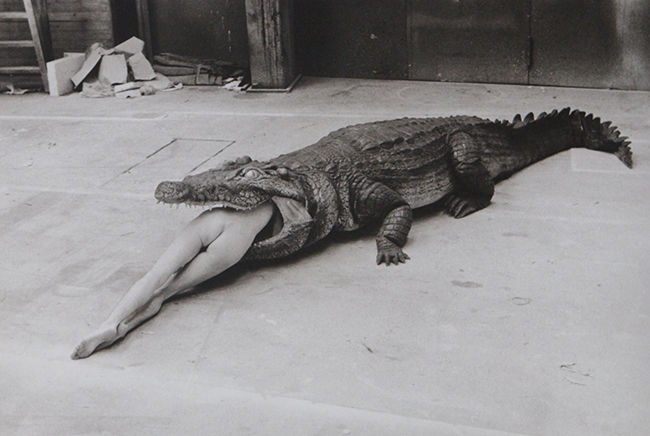 Helmut Newton, The Legend of Virginity | Photography | The Art Reserve