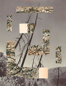 Jackson Pollock's Drunk Face : Brion Nuda Rosch