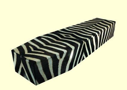 ab261_zebra.jpg (JPEG Image, 800x566 pixels)