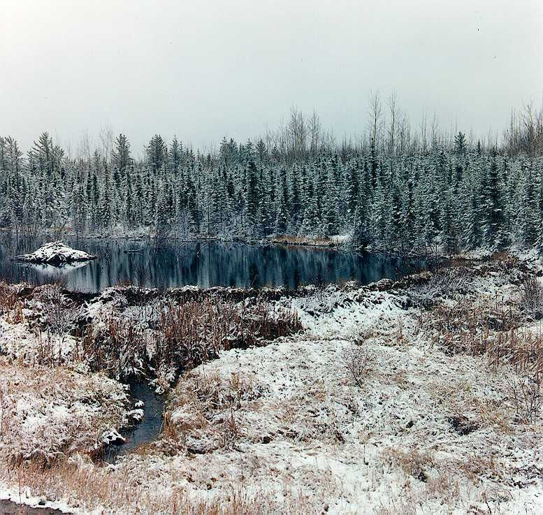 All available sizes | First snow - Beaver dam 1992 | Flickr - Photo Sharing!