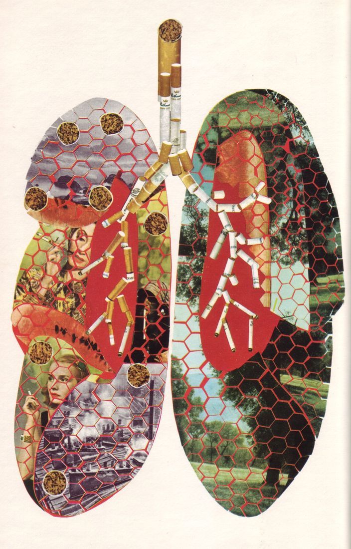 All available sizes | 03 Poumons et tabac, illus. P. Pottier (Le Livre de Sante, v.5, 1967) | Flickr - Photo Sharing!
