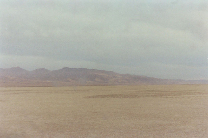 Nevada : Trevor Triano
