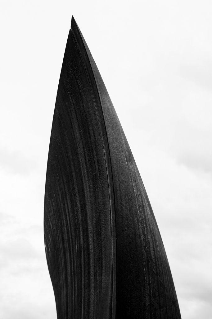 Toutes les tailles | Wake, Richard Serra | Flickr: partage de photos!