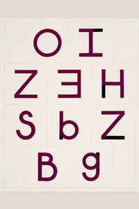 Tauba Auerbach, Letters as Numbers II, 2008