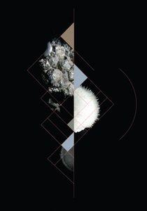 Lasting Impressions : RAQUEL FIGUEIRA