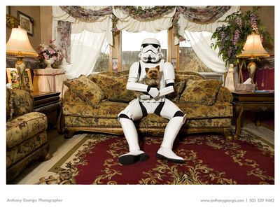 Flickr Photo Download: Stormtrooper