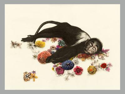 Toutes les tailles | Kirsty Whiten_Flower Monkey_Print | Flickr : partage de photos !