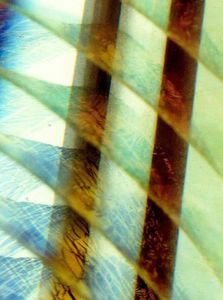 Toutes les tailles | Layered Iridescence | Flickr : partage de photos !