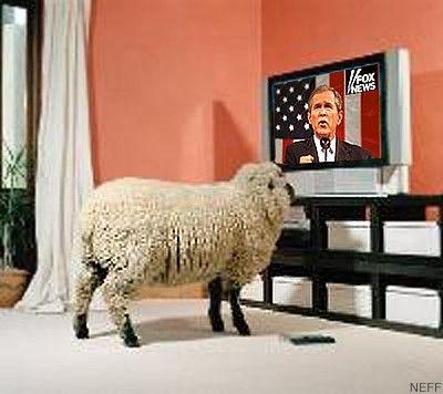 sheeple.jpg 400×356 pixels