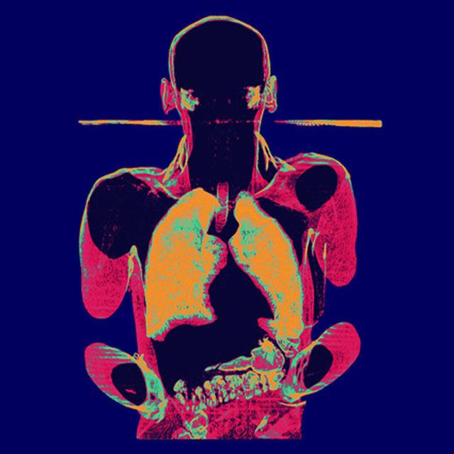 Xavier Lucchesi fait des radiographies artistiques | The Creators Project