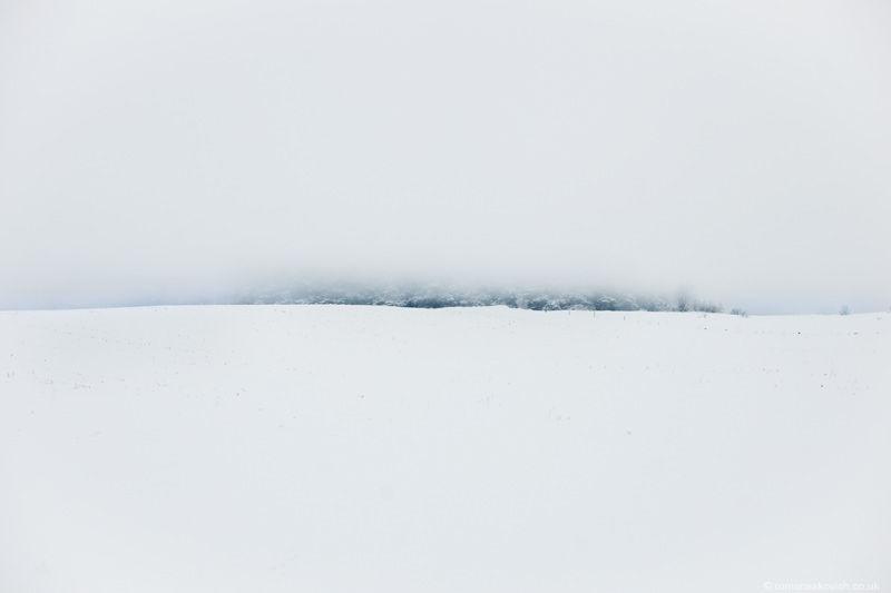 Sweden : Roman Sakovich