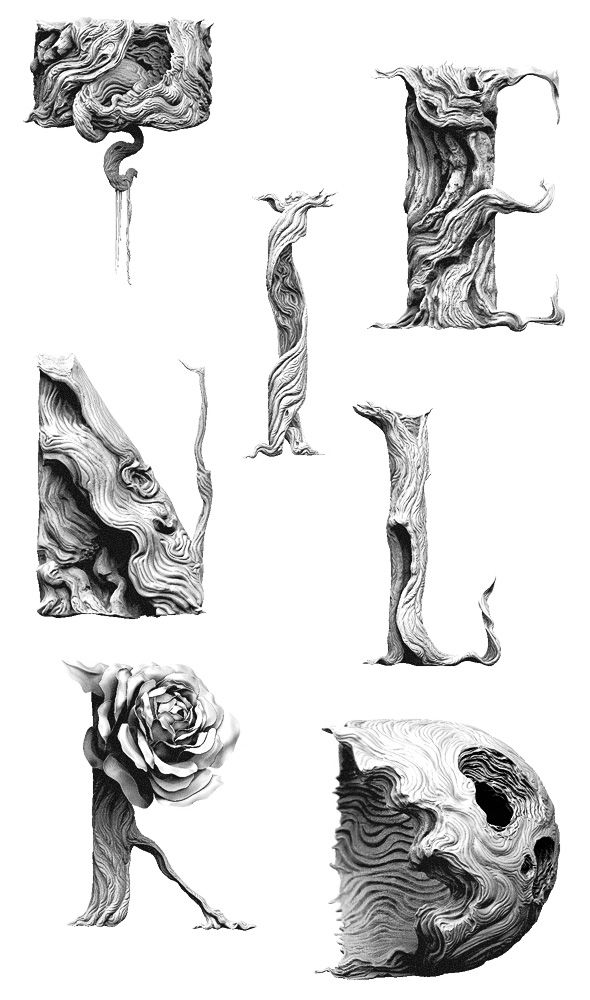 Tendril Typeface Study - Tendril Blog