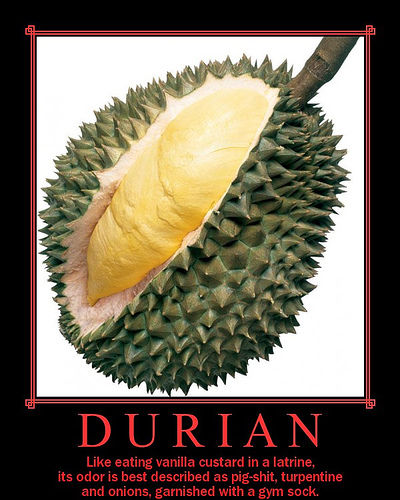 Durian on Flickr - Photo Sharing!