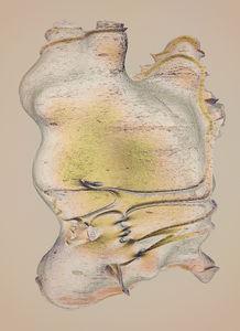 Bones - atelier olschinsky