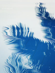 Pool reflections | Flickr - Photo Sharing!