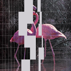 pan_24_web_a.jpg (600×600)