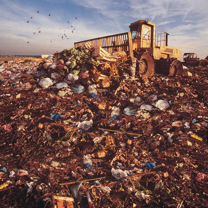 Landfill.jpg 709×709 pixels