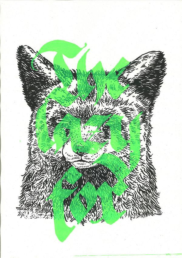 The lazy fox on Behance