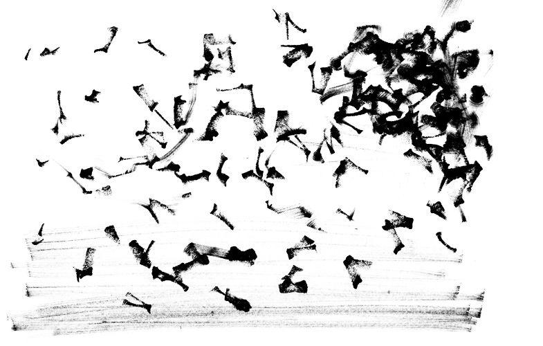 Pattern | Timm Knoerr
