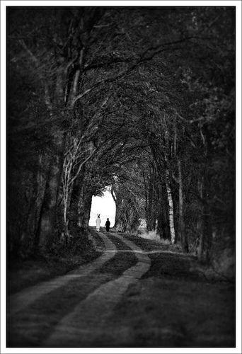 Followthewhiterabbit on Flickr - Photo Sharing!