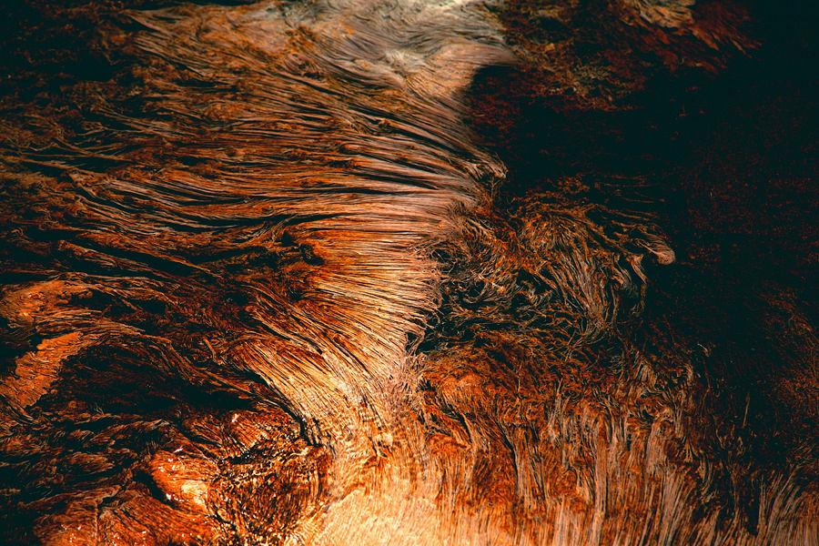 YELLOWSTONE - Navis Photography