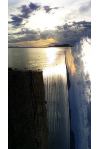 X4DyB1a.jpg 688×1232 pixels