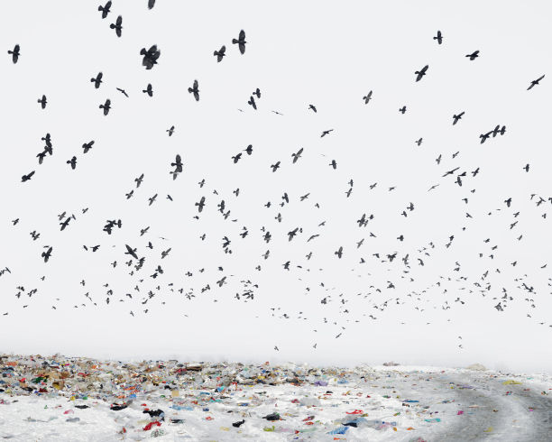 Untouched: A Portrait of Romania by Tamas Dezso - LightBox