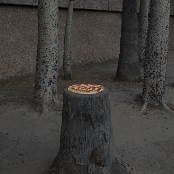 Pizza in the Wild / by Jonpaul Douglass