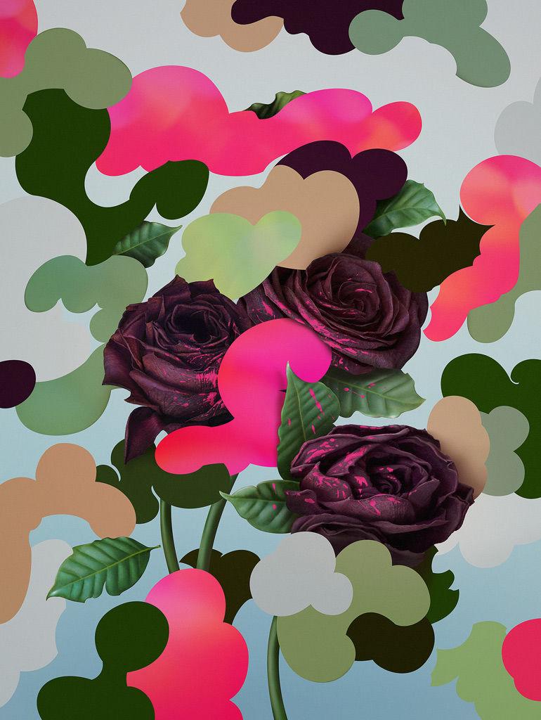 Pawel Nolbert / HelloColor › Camouflowers