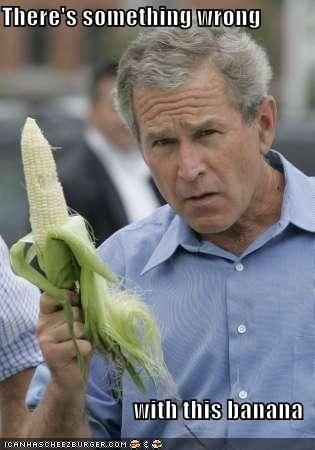 [Image - 516895] | George W. Bush | Know Your Meme