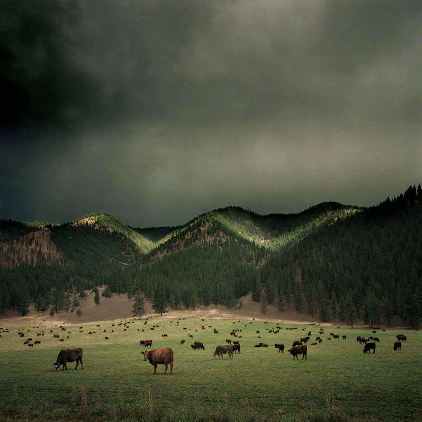 photos by Michael Eastman: everyday_i_show