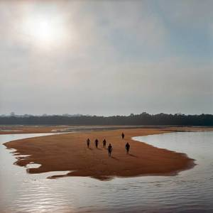 How the Industrialization of the Amazon Is Transforming Brazil | TIME