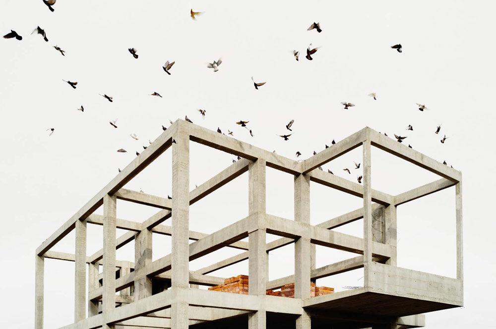In Landscapes : Petros Koublis - Formagramma