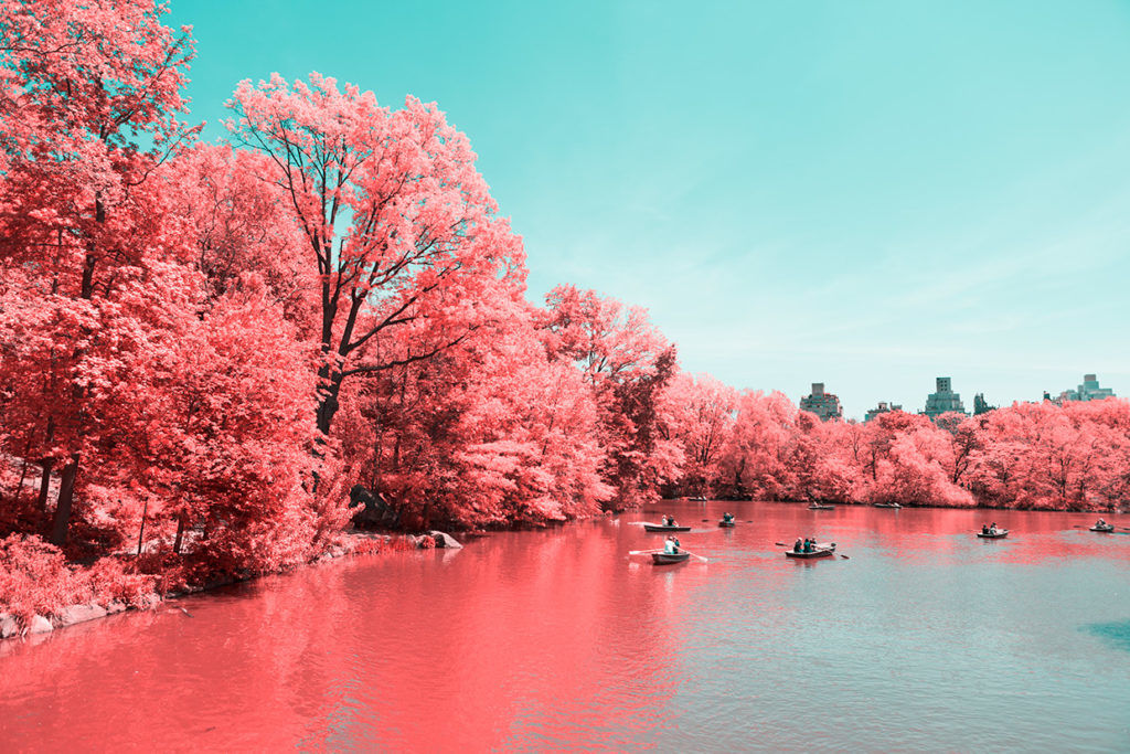 Infrared Photos Transform NYC Into a Technicolor Dreamland | WIRED